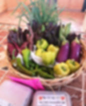 Audreys basket.jpg