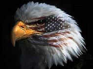 Eagle Tear.jpg