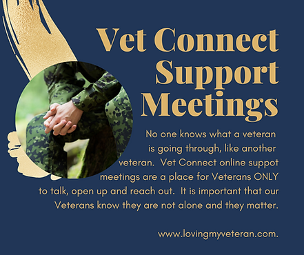 Vet Connect online support meetings.png