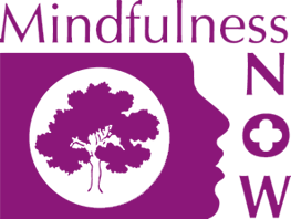 cropped-mindfulness-now-logo.png
