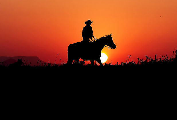 sunset-4469118_1920.jpg