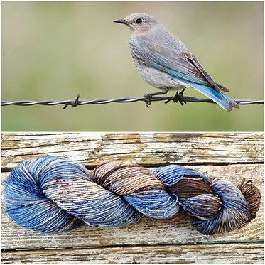 ***Dyed to Order*** Mountain Bluebird