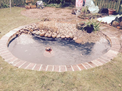 Lympstone Pond
