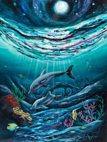 DolphinsParadise.jpg