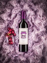 Gascon Wine_edited