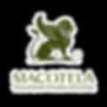 MACOTELA R 2.png