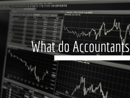 What do accountants actually do?