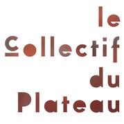 CollPlatCOULEUR_edited.jpg