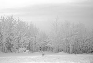 Winterlandschaft.01