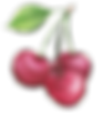 Cherry2.png