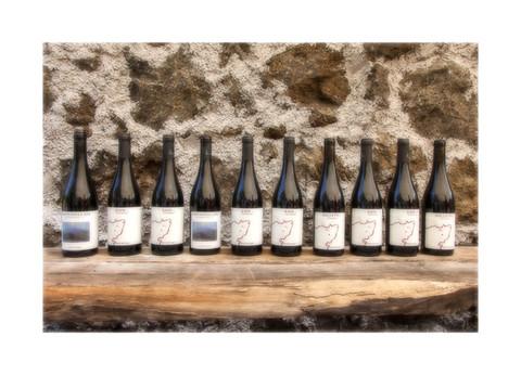 12 different natural Etnella wines