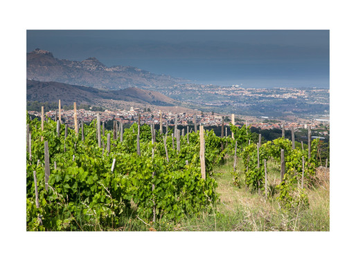 Heroic Viticulture and Natural wine
