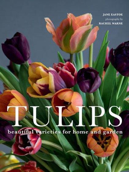 Tulips by Jane Eastoe