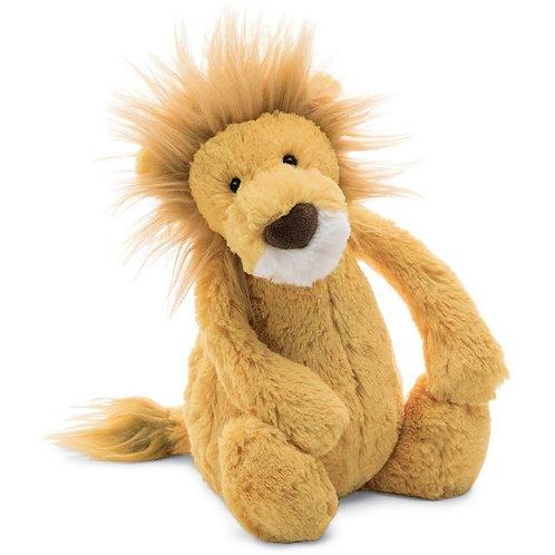 Medium Bashful Lion