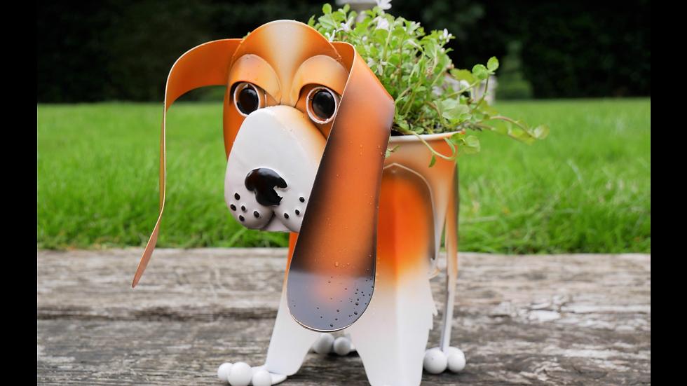 Beagle Planter
