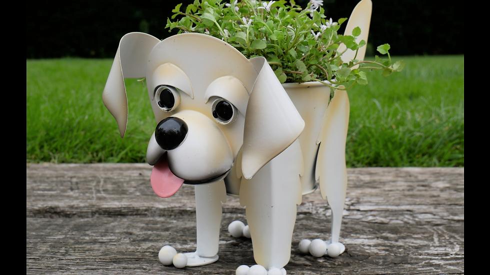 Labrador Planter