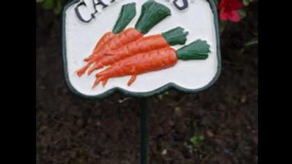 Carrots Cast Iron Garden Sign