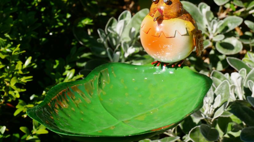 Robin Bird feeder on stake
