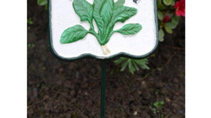 Spinach Cast Iron Garden Veg Sign