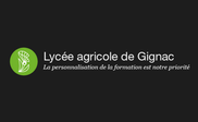 LYCEE.png