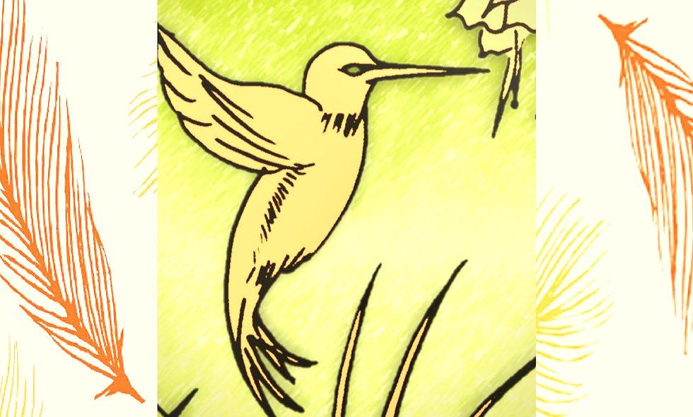 Seasonal Birds Adult Coloring Books for Seniors