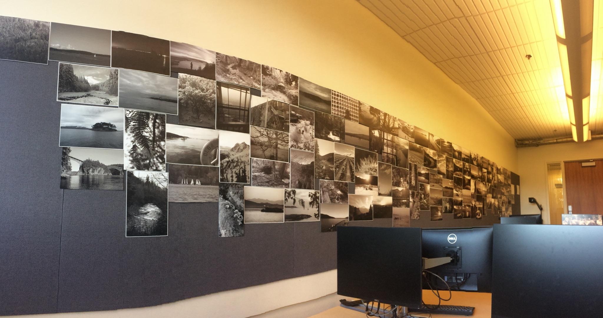 CF 420 Photo Wall