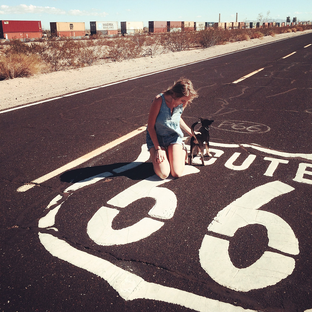 A photo of Katie with her puppy Daisy, kneeling on a Route 66 symbol painted on the road, with a box-car train going by behind.