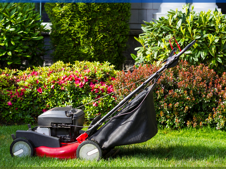 Affordable Yard Clean-Up Services in Glendale AZ