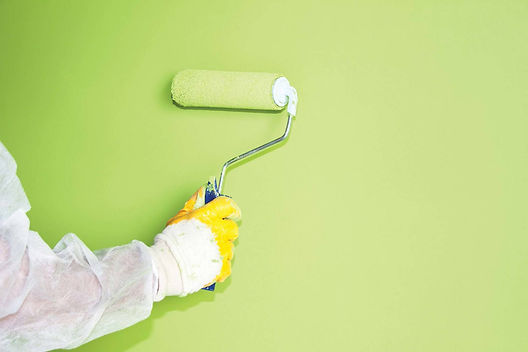 Professional House Painting Service