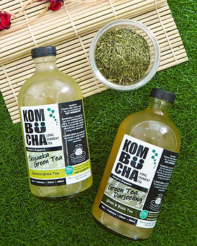 kombucha_on_grass.jpg