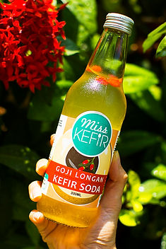 Water Kefir Frequently Asked Questions