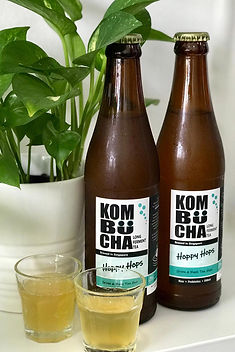 Kombucha Frequently Asked Questions