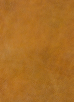 leather25.jpg