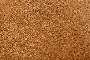 leather19.jpg
