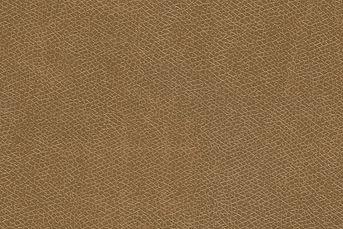 leather20.jpg