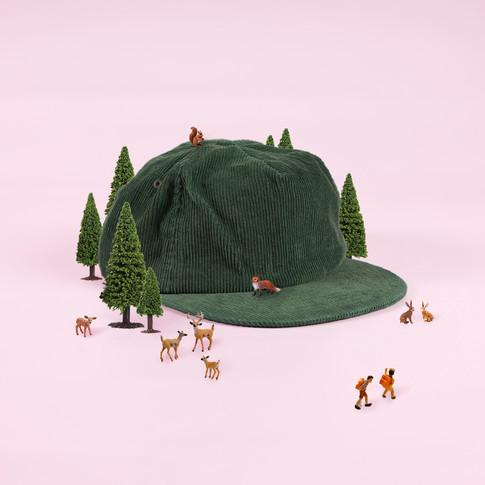 Forrest Green Wednesday.jpg