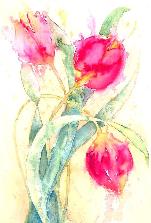 Tulip Shower