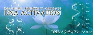 DNAアクティベーション バナー  蓮の花.jpg