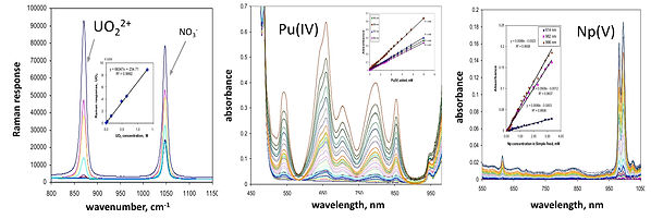Raman and absorption spectra of actinides