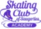 Skating academy.png