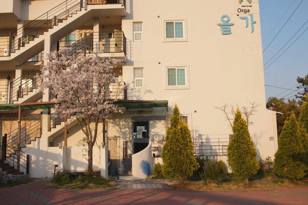 KakaoTalk_Photo_2019-03-30-20-57-45-1.jp