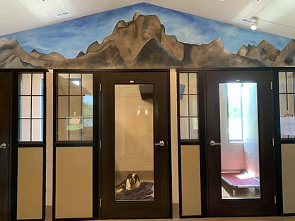 Rustic Cabins a PawsCienda's dog training facility