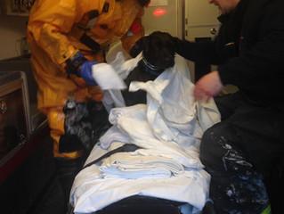 Harrowing Coast Guard Rescue of Dog