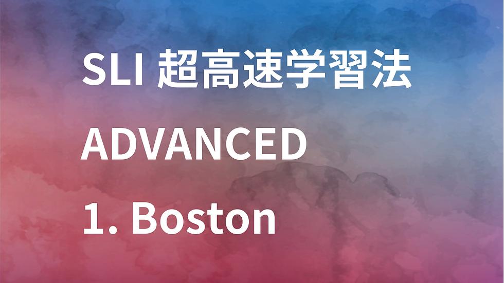 【DL版】SLI超高速学習法Advanced(体験版)