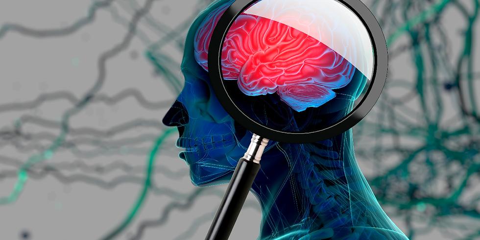 《快禅学》教養講座①大脳生理学