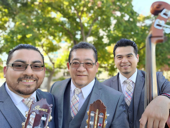 Romantic Music Trio Los Brillantes
