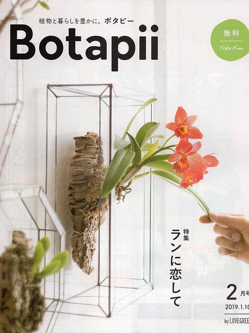 【1人1点】ボタピー2019年2月号