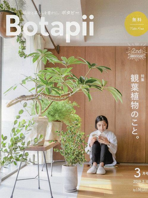 【1人1点】ボタピー2019年3月号