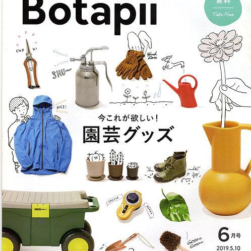 【1人1点】ボタピー2019年6月号