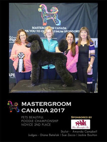 Mastergroom 2017 with Amanda Campbell